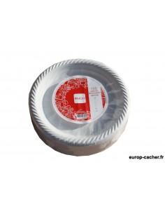 Assiettes plastiques grand modèle x100